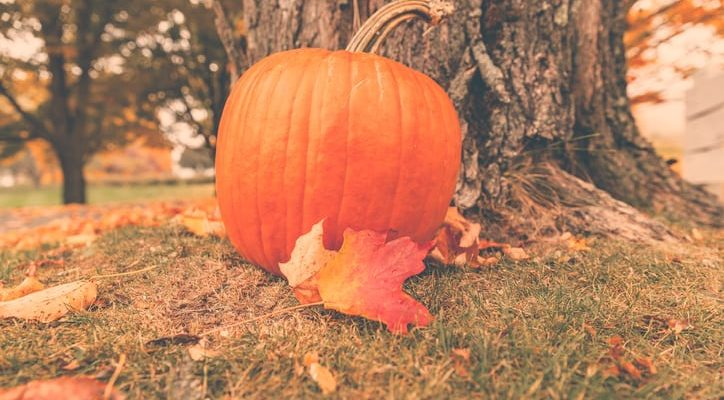 4 Reasons Why You Should Spend Halloween in the Poconos | Skytop Lodge