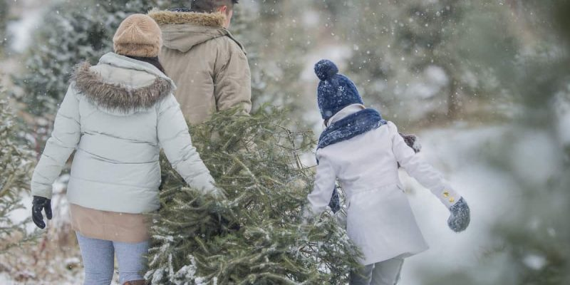 Things to Do in the Poconos for the Holidays | Skytop Lodge