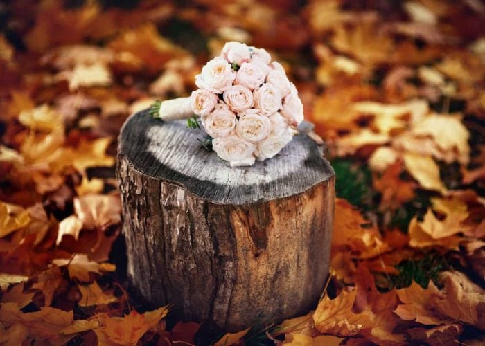 Planning Your Fall Wedding in the Poconos | Skytop Lodge