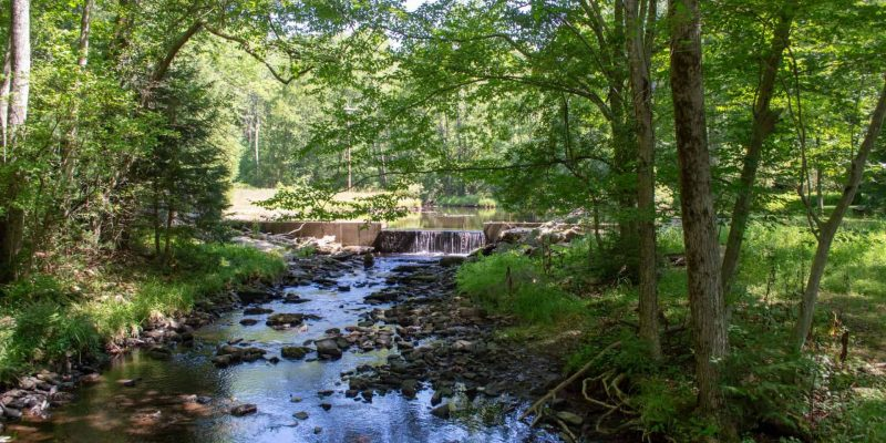 Trout Stream Trail | Hiking | Activities & Events | Skytop Lodge