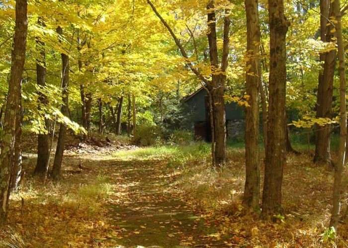 Hiking at Skytop Lodge | Activities and Adventures in the Poconos